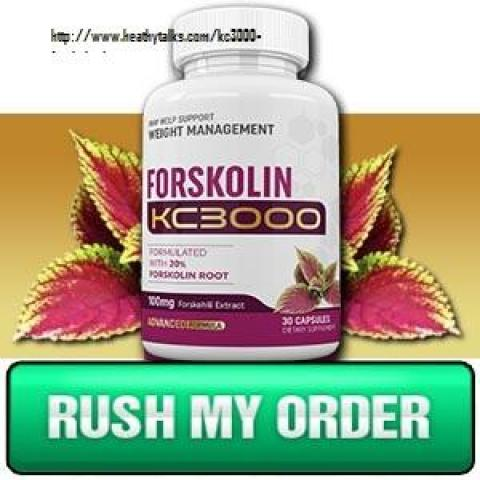 KC3000 Forskolin